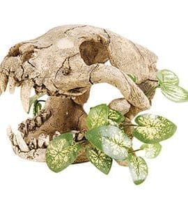RS Skull with Silk Plant 19.5 x 15.5 x 14cm FP4011